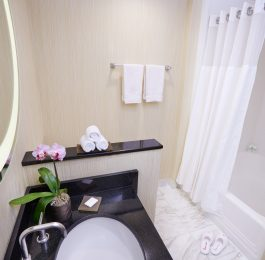 Oasis Standard Bathroom